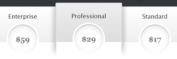 CSS3 Pricing Table Design For A Product or Service Plan (1/4)