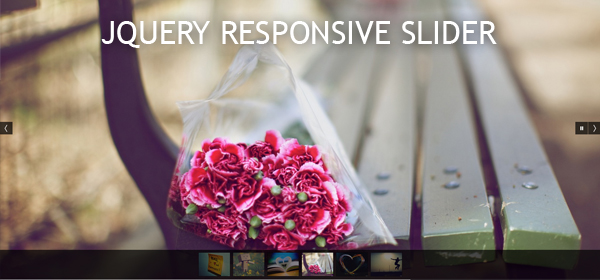 A Free jQuery Responsive Slider or Fluid Slideshow Plugin - Fluid_DG (2/2)